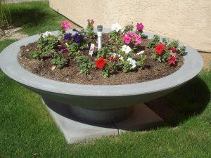 landscape bowl